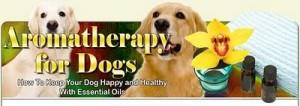 Aromatherapyfordogs-naslovnica